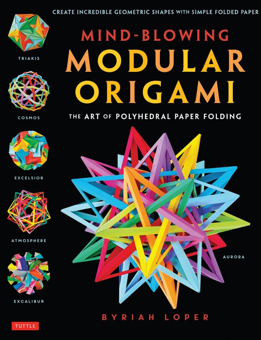 Origami Odyssey: A Journey to the Edge of Paperfolding: Includes ... | 700x537